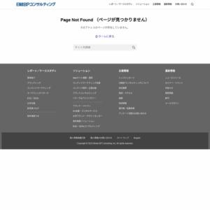 IT資産戦略白書2013-2015