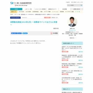 消費動向調査(2013年2月) ~消費者マインドはさらに改善