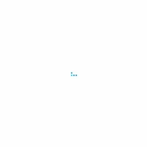 2009.06 住宅購入・リフォームの意識と行動~購入、リフォーム検討者編~