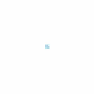 2010.12 未婚女性のおしゃれ消費と意識~ファストファッションとファッション意識編~