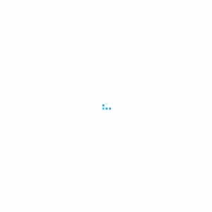 2012.11 女性の美容意識と行動~美容全般編~