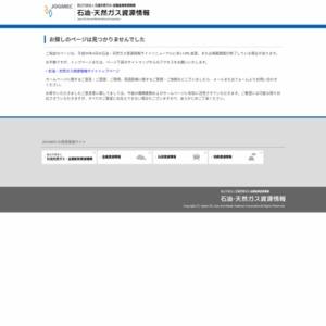 石油市場に関する考察(中間報告)