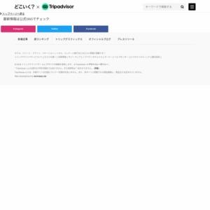 日本就航のLCC全路線(国際線)
