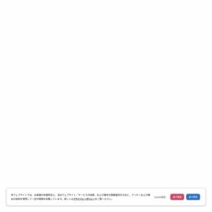 外国人留学生の就職活動調査(2013年4月発行)