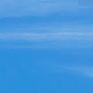 2015年桜開花予想(第6回)