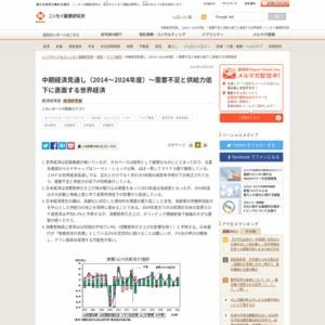 中期経済見通し(2014~2024年度)~需要不足と供給力低下に直面する世界経済