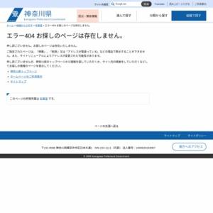 工業生産指数月報 平成29年10月分(速報)